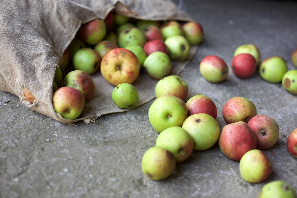 A bag of mainly fresh apples spilled on concrete floor