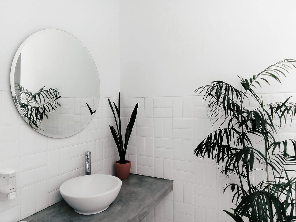 A white bathroom, where only one corner is shown and it has a couple of plants and a round mirror above a white sink