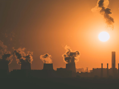 #PROJECTPLANETTALKS: Jadi Lebih Hijau, Nafas Bersih: Semua Tentang Penggundulan Hutan & Polusi Udara