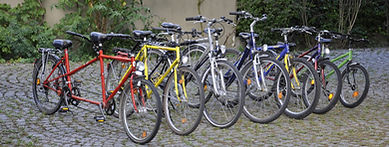 A selection of bicycles for our guests