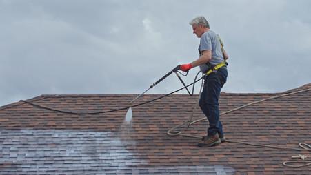 Greener Shingles Dealer Rejuvenating a Roof