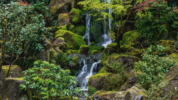 Japanese Garden, Portland, OR, 2015.