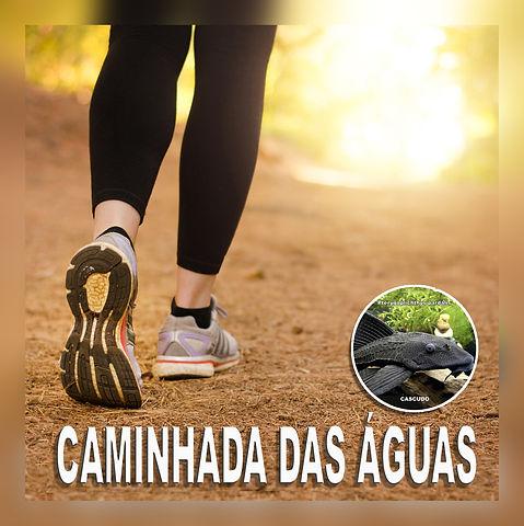 03.caminhada_aguas.jpg