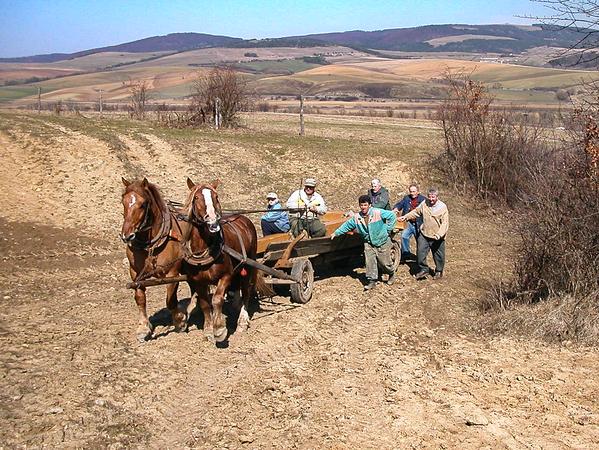 Pár dní pred Veľkou nocou v roku 2006 sa smerom k lesnej kaplnke vydali fulianski poľovníci so záprahom koní, ktoré ťahali na voze drevený kríž pre kaplnku...