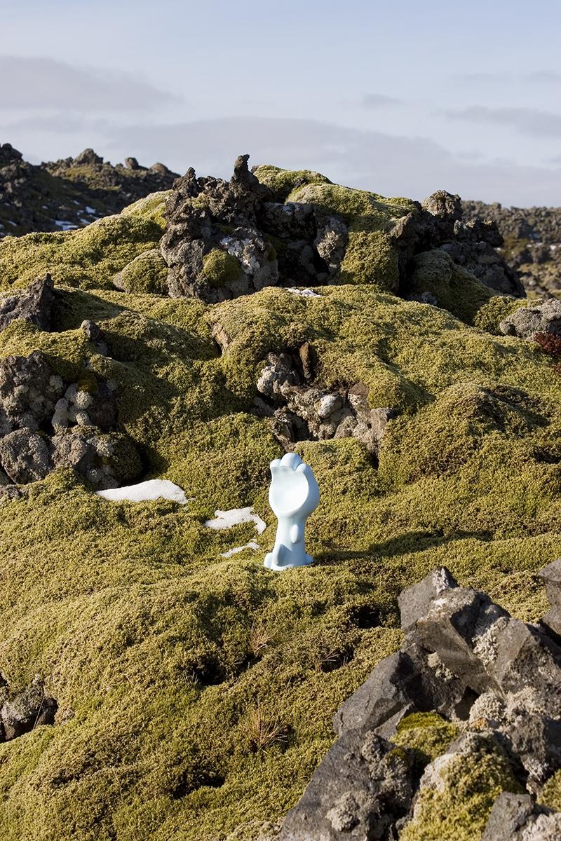 Icelandic Garden #7