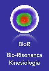 BioR.png