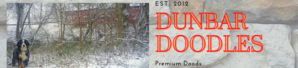 Copy of Dunbar Doodles (1).png