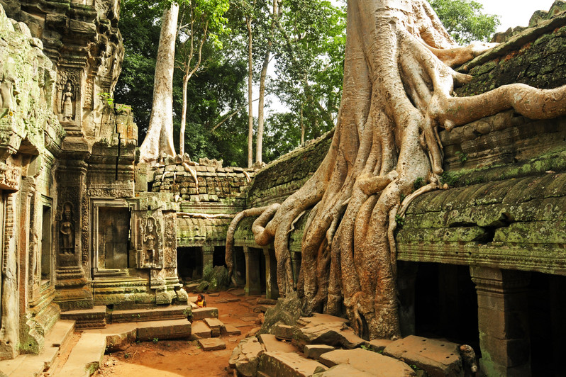 Ta Prohm temple in Angkor
