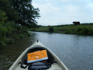 Canoe Camping the Mad River