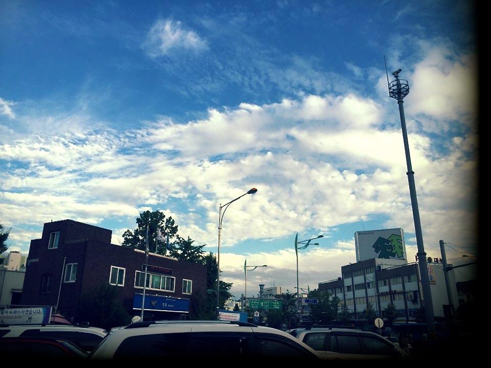 물고기 앞 하늘