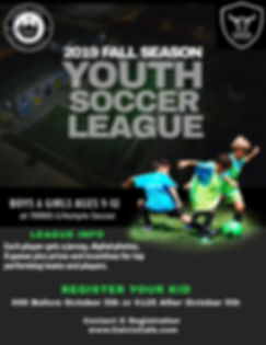 fall youth soccer league 2019.jpg