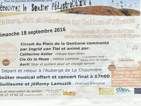 Nature, art et musique au Ballon d'Alsace