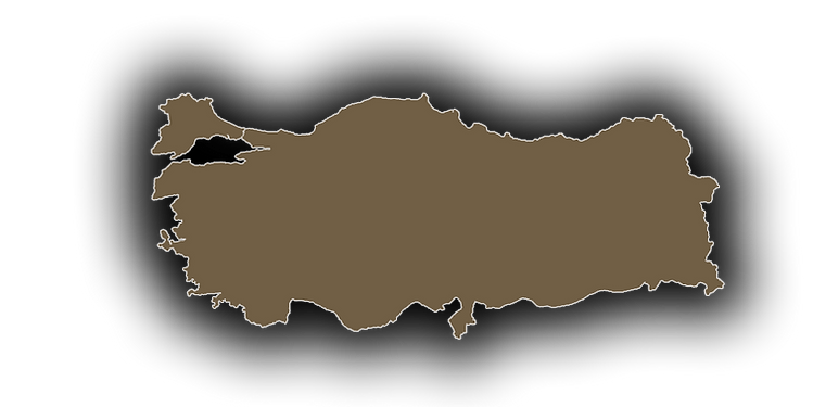 beeyond-turkey.png