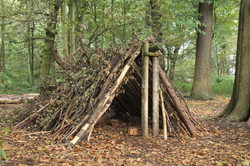 A Forest Shelter Made From All Natural Materials