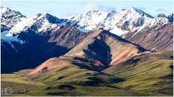 Parc national Denali en Alaska