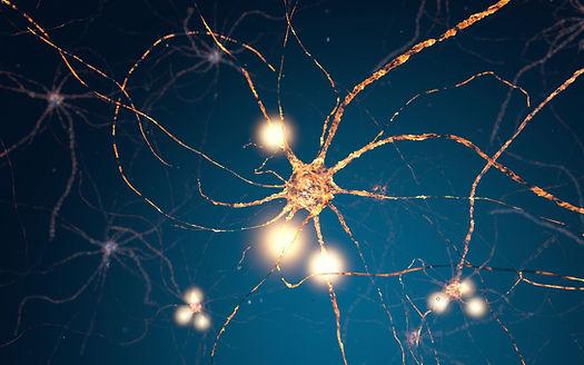 Neuroplasticity Consultants