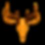 whitetail-deer-skull-european-mount-for-