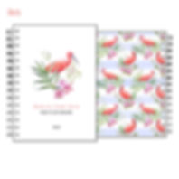 agenda ibis.jpg