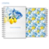 agenda lemon.jpg