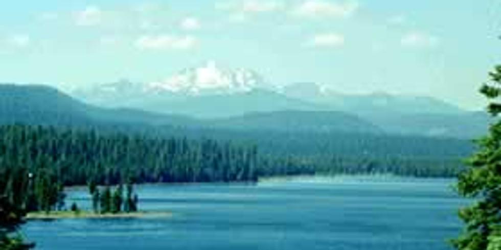 Fishout-Lake Almanor