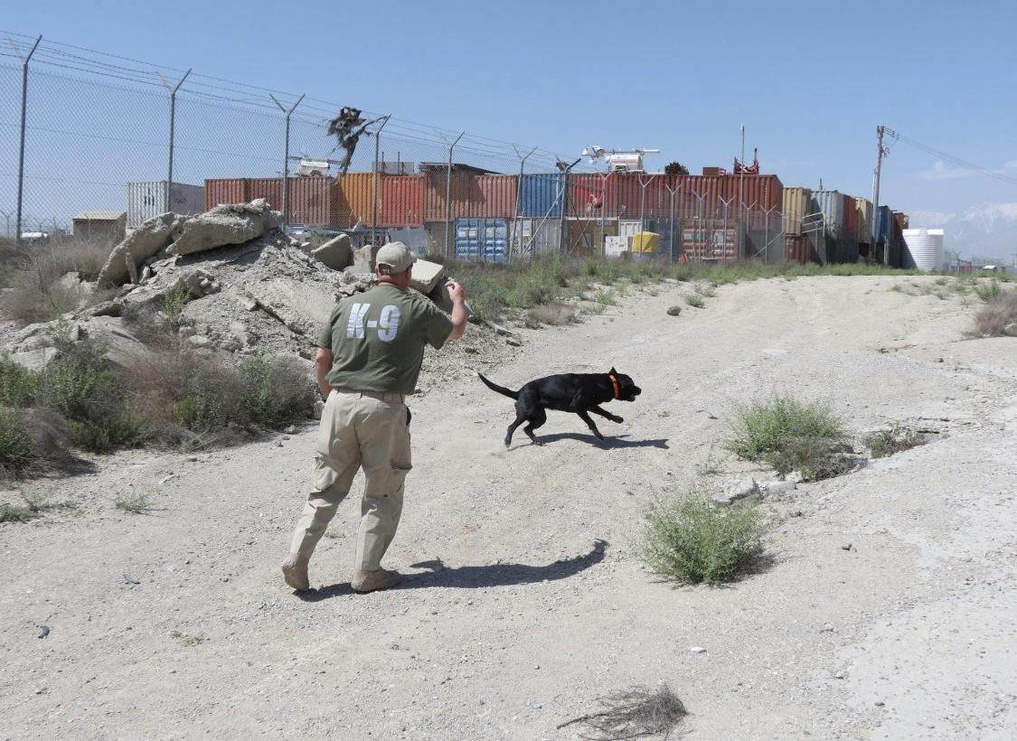 Chris & K9 Federal in Afghanistan