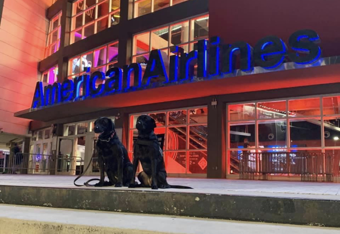 K9s Hunter and Jetty in front of American Airlines Arena