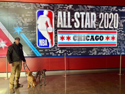 Handler Josh and K9s Abbie and Josie at NBA All-Star Weekend 2020