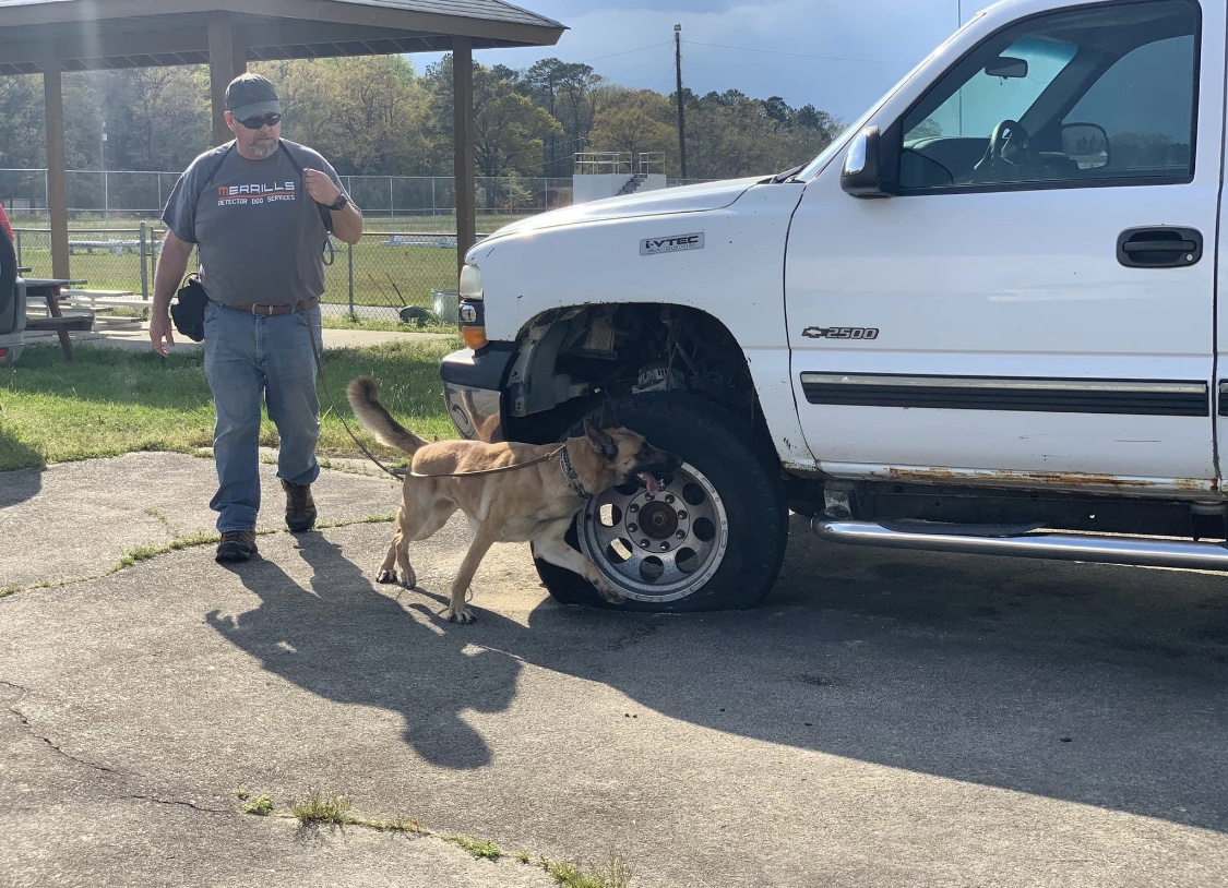 K9 Zora and Chris searching a parking lot