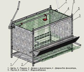 блок (клетка)для кур-несушек