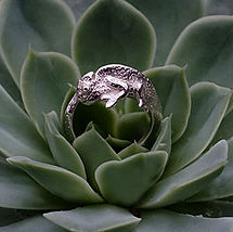 Dani Lane Chameleon Ring