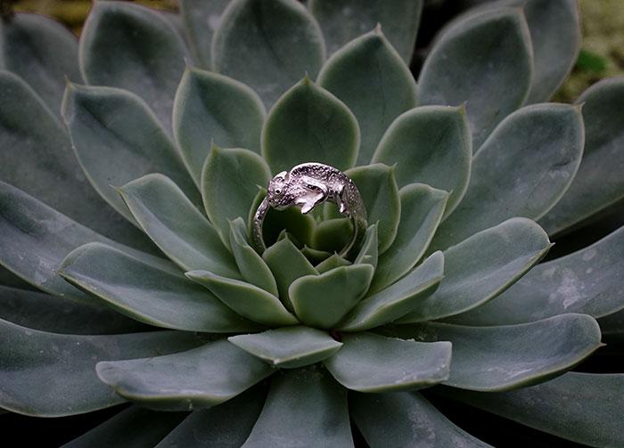 Chameleon Ring