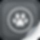AllyDVM_App_edited.png