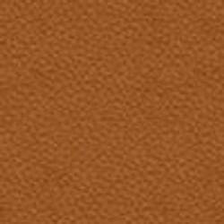 105-amber-swatch-100