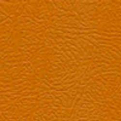 608_Pumpkin