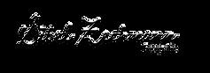 Logo Sibel schwarz.png