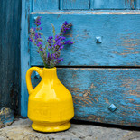 Lavender in a yellow vase on a backgroun