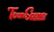 Teen scene Logo.png