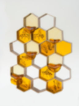 Bee my honey 2017.jpg