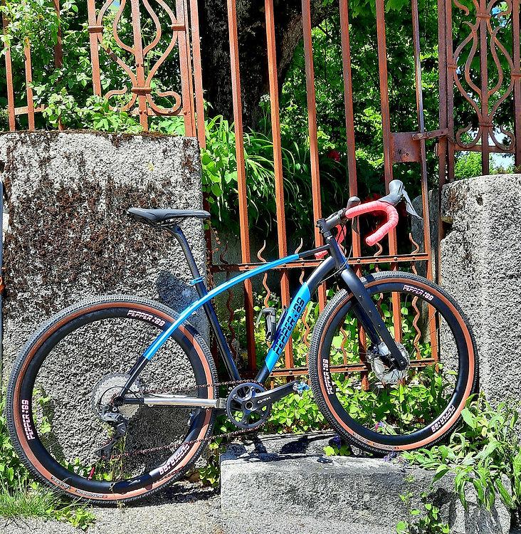 Gravel bike pepper blue.jpg