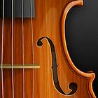violin_icon_by_hbielen-d2zvrgj.png