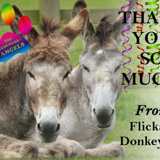 The Flicka Foundation, Cornwall
