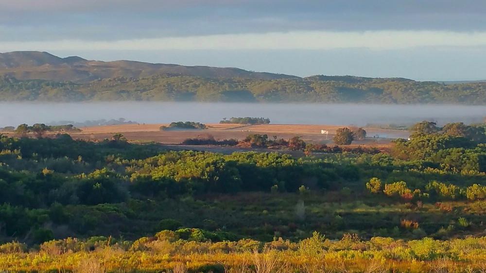 Misty Valley.jpg