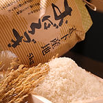 札幌すすきの 活魚 海鮮 炉ばた いそ舟 北海道産米