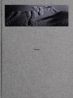 Couverture-CHAMPS