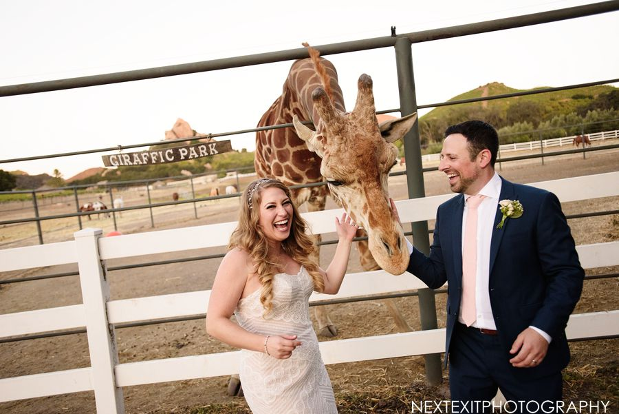 saddle rock ranch malibu wedding
