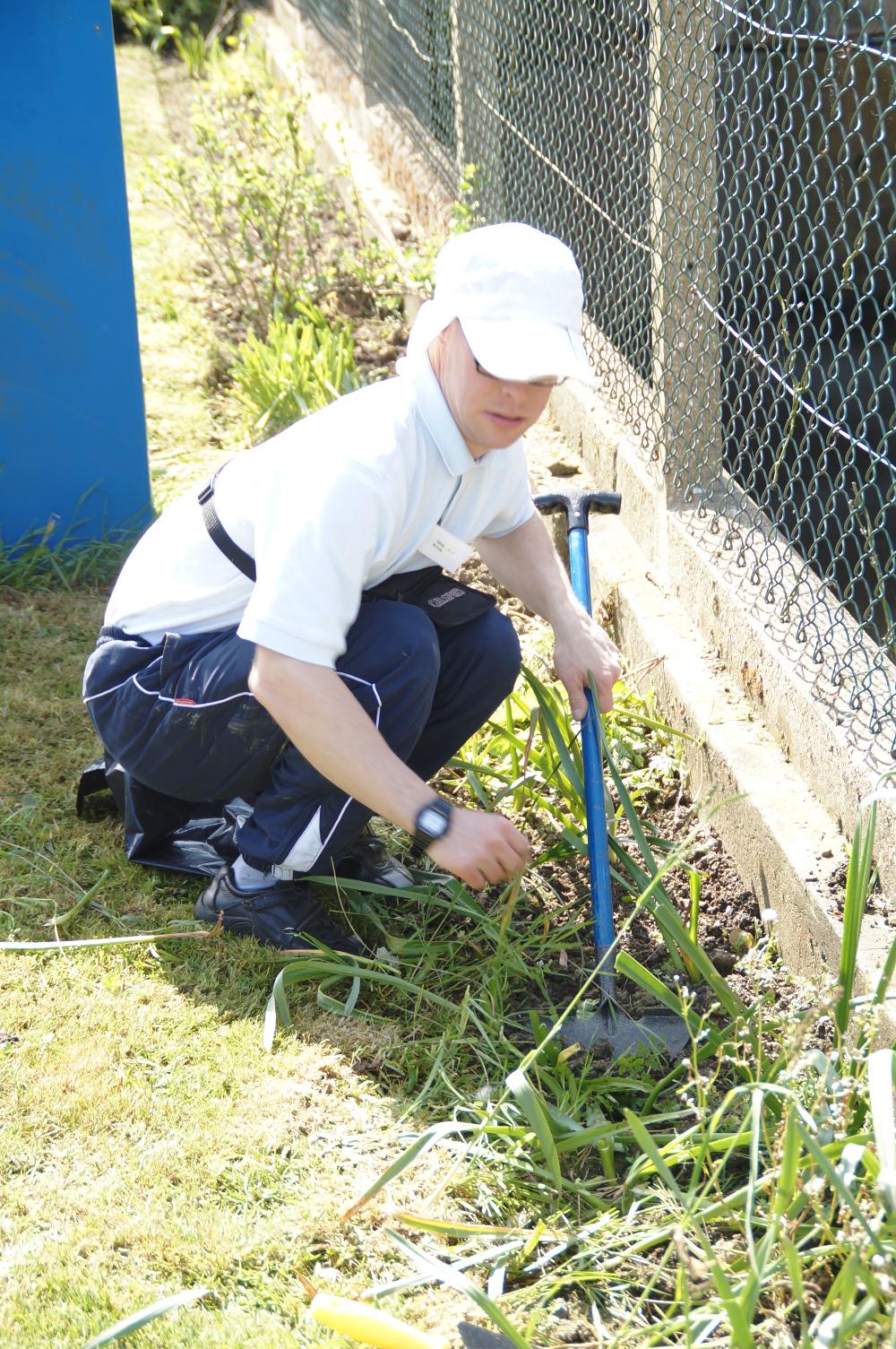 DW gardening