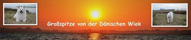 grossspitze_von_der_dänischen_wiek.jpg