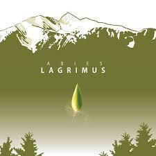 À LA DÉCOUVERTE D'ABIES LAGRIMUS *