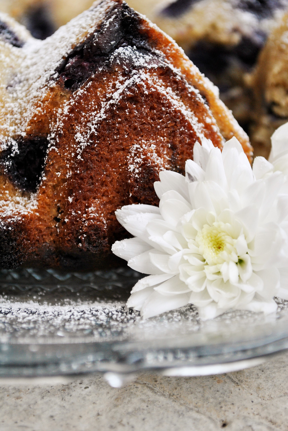 Gâteau Myrtille Coco Amande Yotam Ottolenghi