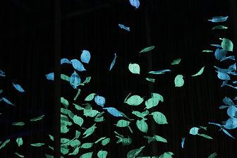 Light Installation | Gonzalo Bascuñan  |  Gonzalo Bascunan   Flawless  Light Installation